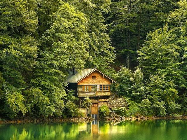 Дача в лесу на озере