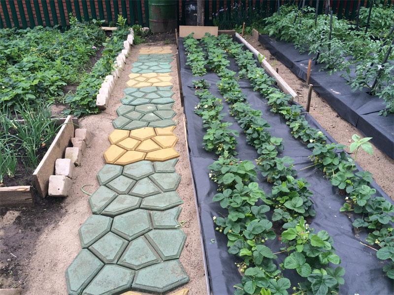 Укладка садовой дорожки в огороде