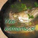 Уха - рыбный суп