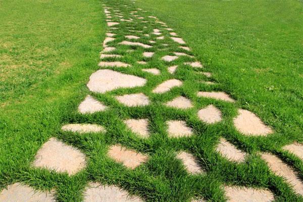 Дорожка из камня - в щелях специальный декоративный газон