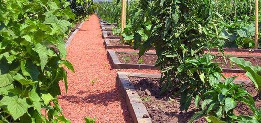 Теннисит для садовых дорожек на даче