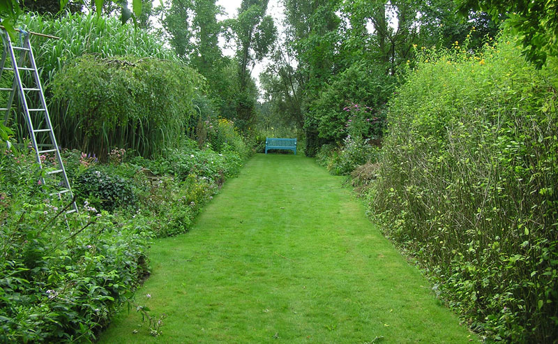 Травяная тропинка на даче