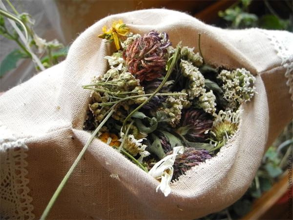 Травы на Ивана Купала - волшебные и магические растения