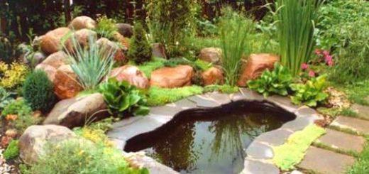 Водоемы в ландшафтном дизайне дачного участка