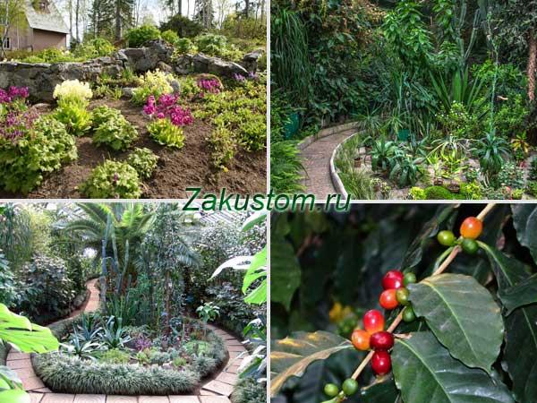 Полярно-альпийский ботанический сад-институт в Кировске