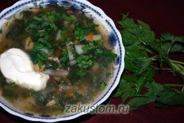 Тарелка супа из крапивы и сныти
