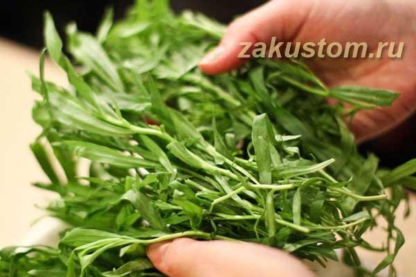 Эктрагон - пряная трава